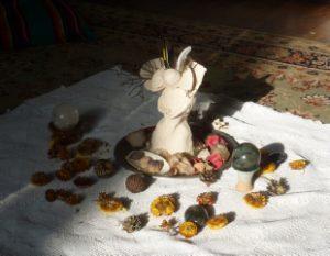 Voyage shamanique